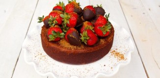 low fructose gluten free chocolate cake